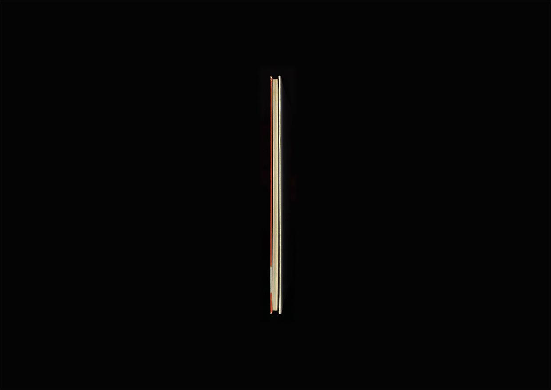 ikebana2_edge